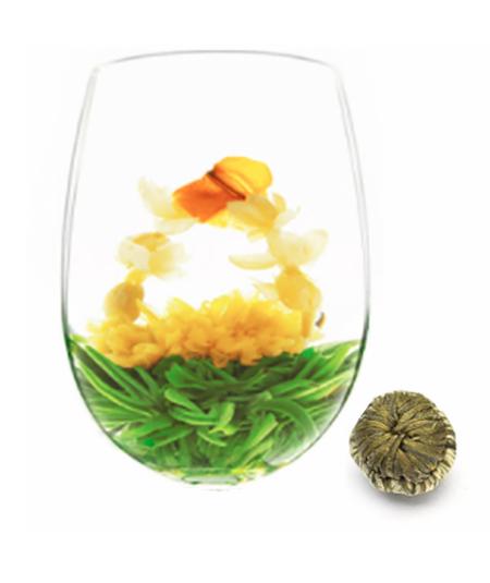 image fleur de thé chrysanthéme